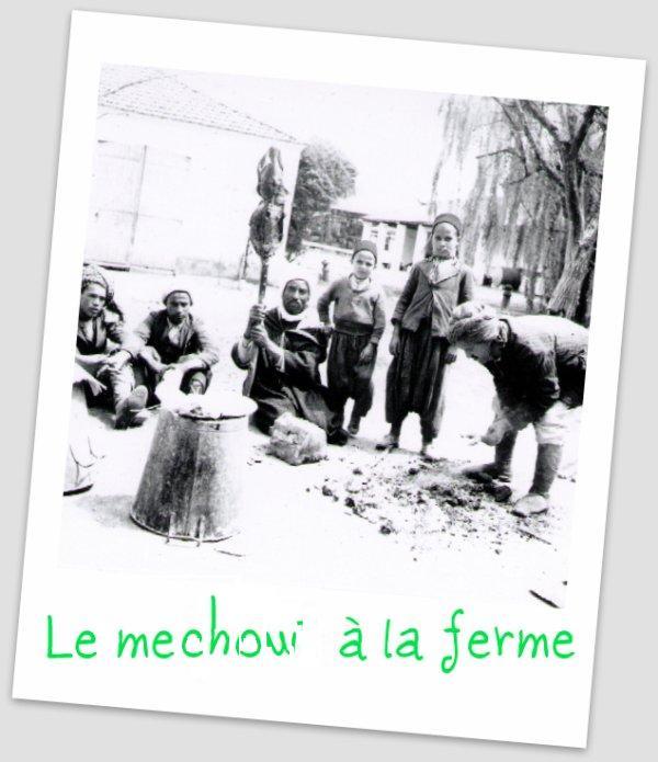 le méchoui algerien à Sfisef 3080415835_1_5_eads1ixn1
